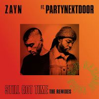 Cover Zayn feat. PartyNextDoor - Still Got Time