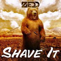 Cover Zedd - Shave It