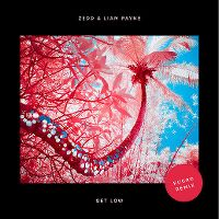 Cover Zedd & Liam Payne - Get Low