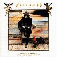 Cover Zucchero - Spirito di vino - Stray Cat In A Mad Dog City