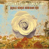 Cover Zucchero Sugar Fornaciari - Quale senso abbiamo noi