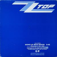 Cover ZZ Top - Woke Up With Wood